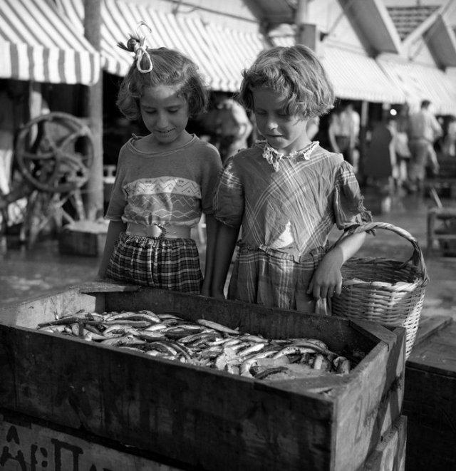 Ψαράδικα στην Ιάσονος, Δημήτρης Λέτσιος, ~1960