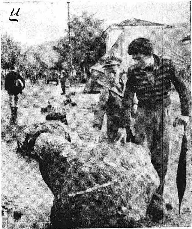 15-10-1955-p1-ETHNIKOS KHRYX-e